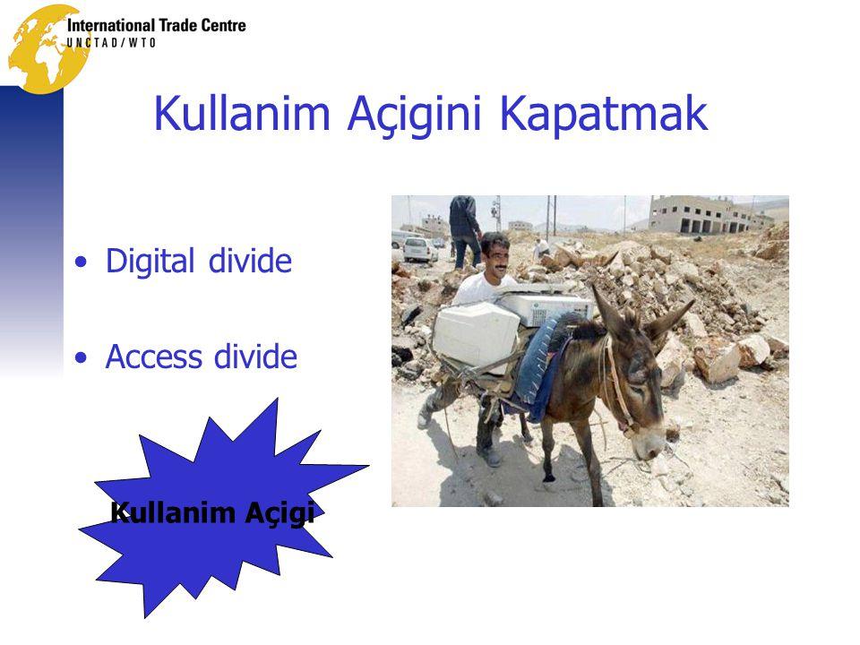 Kullanim Açigini Kapatmak •Digital divide •Access divide Kullanim Açigi
