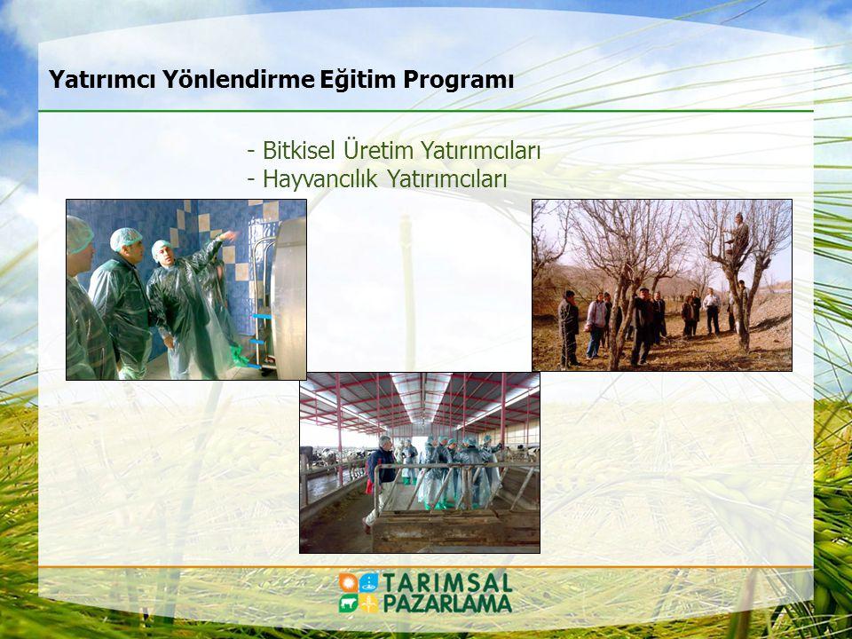 Danışmanlıklarımız: Yatırım, Üretim, Pazar Yapılandırma, Ürün Geliştirme