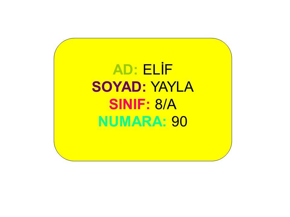 AD: ELİF SOYAD: YAYLA SINIF: 8/A NUMARA: 90