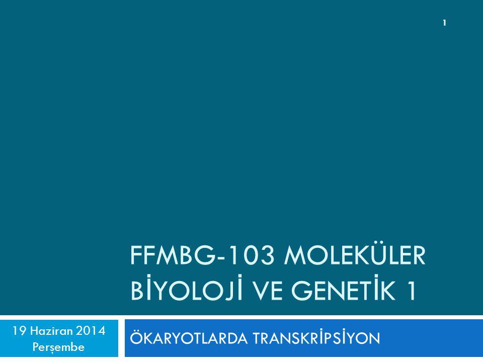 FFMBG-103 MOLEKÜLER B İ YOLOJ İ VE GENET İ K 1 ÖKARYOTLARDA TRANSKR İ PS İ YON 19 Haziran 2014 Perşembe 1