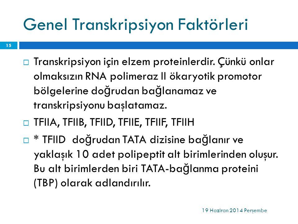 Genel Transkripsiyon Faktörleri  Transkripsiyon için elzem proteinlerdir. Çünkü onlar olmaksızın RNA polimeraz II ökaryotik promotor bölgelerine do ğ