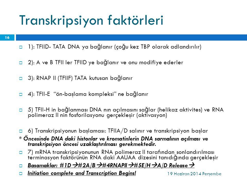Transkripsiyon faktörleri 19 Haziran 2014 Perşembe 16  1): TFIID- TATA DNA ya ba ğ lanır (ço ğ u kez TBP olarak adlandırılır)  2): A ve B TFII ler T
