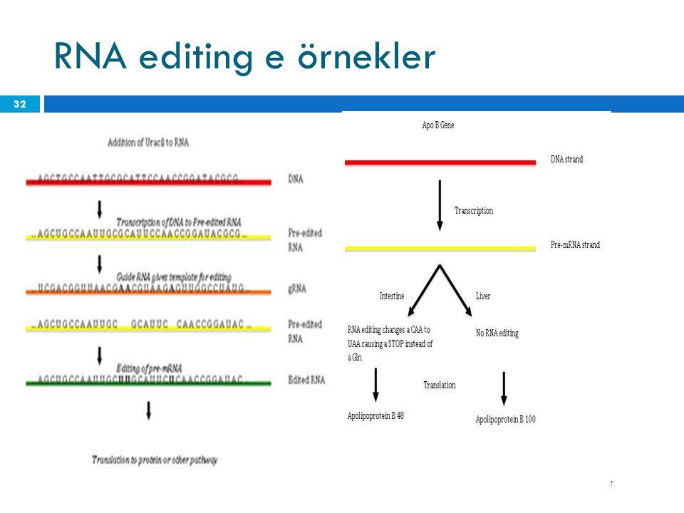 RNA editing e örnekler 19 Haziran 2014 Perşembe 32