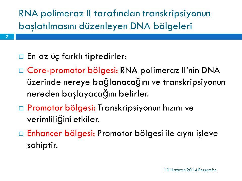 RNA polimeraz II tarafından transkripsiyonun başlatılmasını düzenleyen DNA bölgeleri  En az üç farklı tiptedirler:  Core-promotor bölgesi: RNA polim