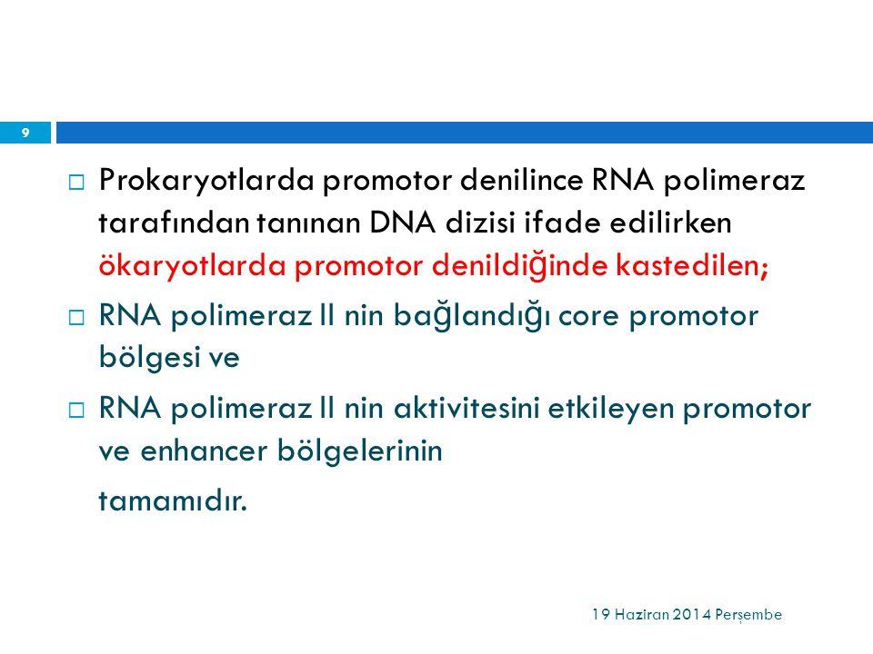  Prokaryotlarda promotor denilince RNA polimeraz tarafından tanınan DNA dizisi ifade edilirken ökaryotlarda promotor denildi ğ inde kastedilen;  RNA