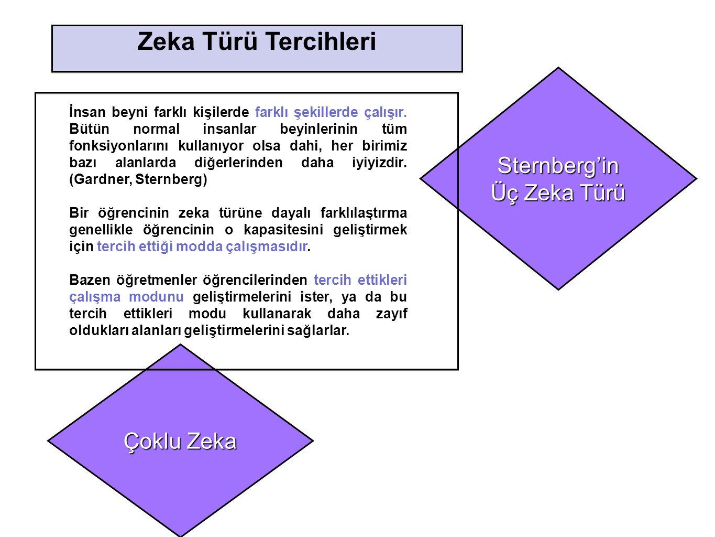 Çoklu Zeka Sternberg'in Üç Zeka Türü Zeka Türü Tercihleri İnsan beyni farklı kişilerde farklı şekillerde çalışır. Bütün normal insanlar beyinlerinin t