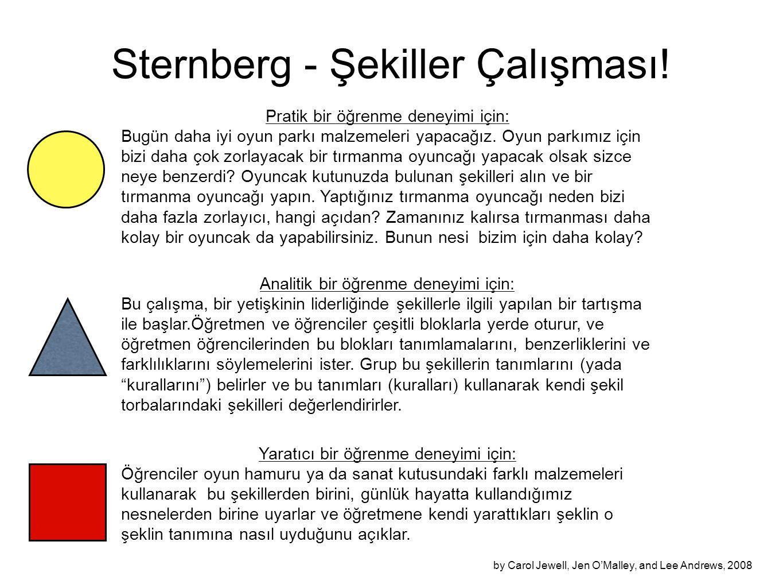 Sternberg - Şekiller Çalışması! Pratik bir öğrenme deneyimi için: Bugün daha iyi oyun parkı malzemeleri yapacağız. Oyun parkımız için bizi daha çok zo