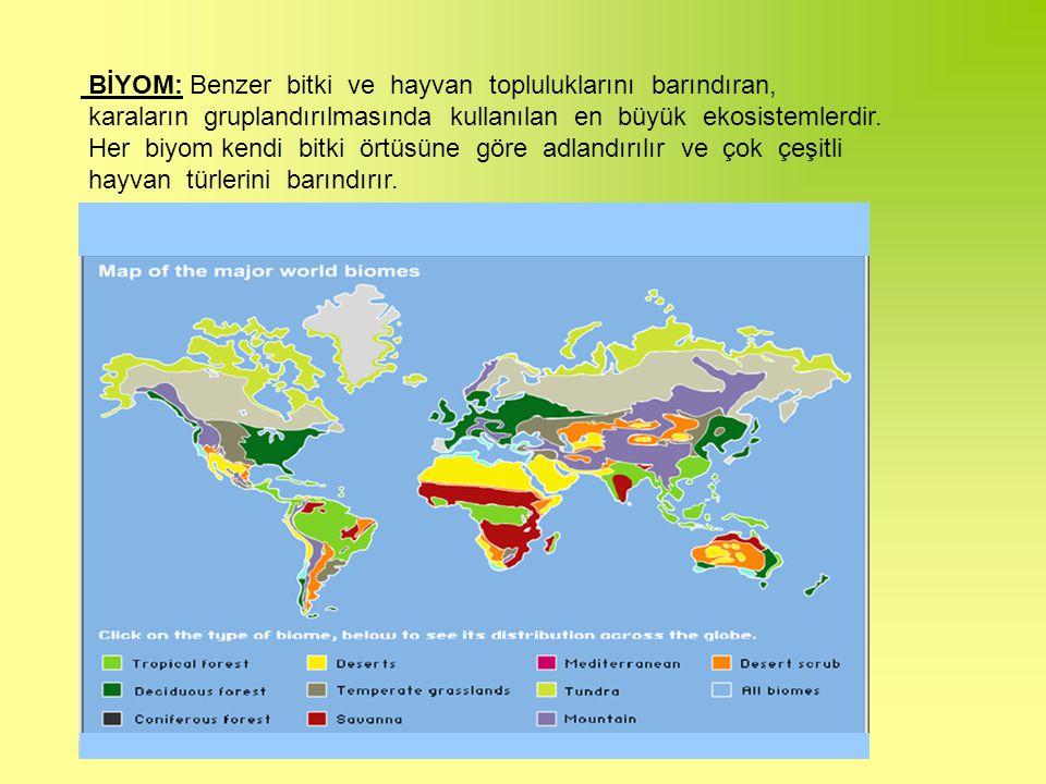 BİYOM: Benzer bitki ve hayvan topluluklarını barındıran, karaların gruplandırılmasında kullanılan en büyük ekosistemlerdir.