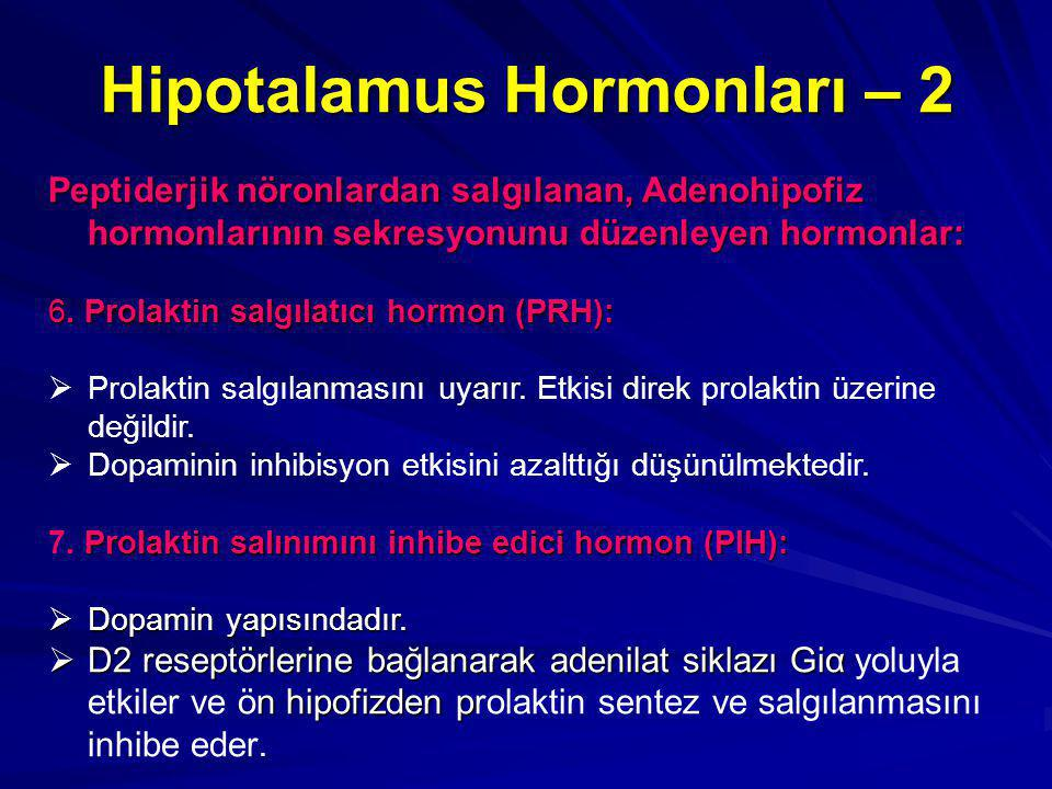 Hipotalamus Hormonları – 2 Peptiderjik nöronlardan salgılanan, Adenohipofiz hormonlarının sekresyonunu düzenleyen hormonlar: 6.