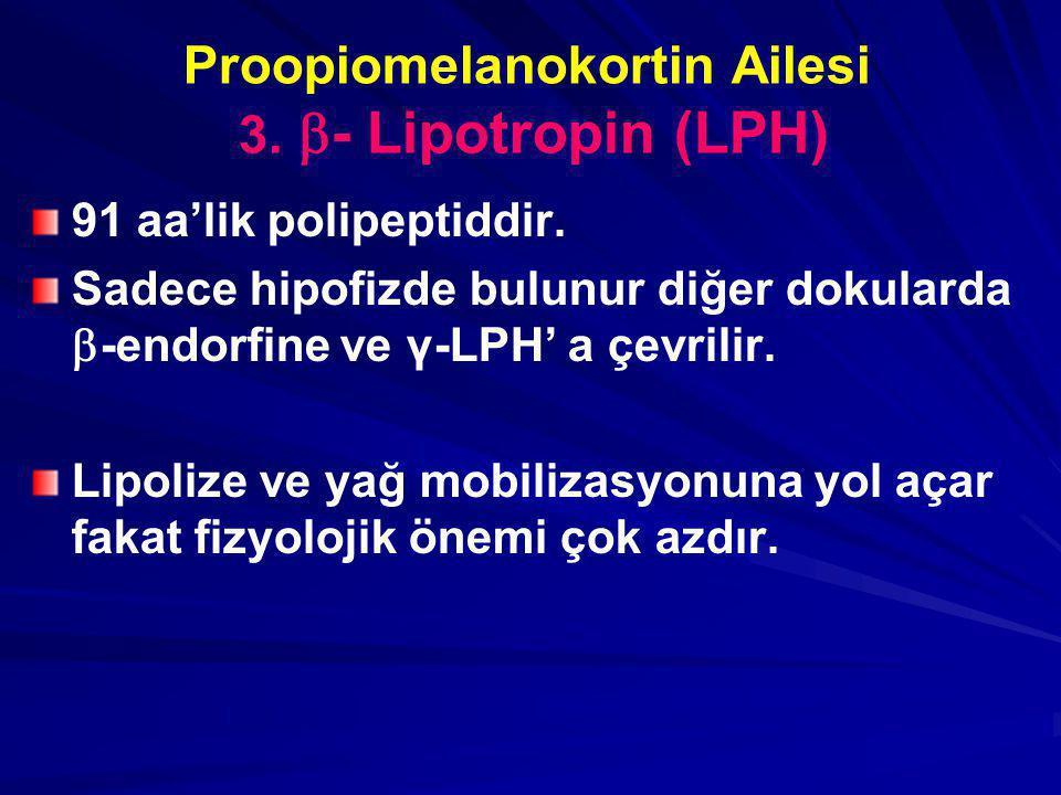 Proopiomelanokortin Ailesi 3.  - Lipotropin (LPH) 91 aa'lik polipeptiddir. Sadece hipofizde bulunur diğer dokularda  -endorfine ve γ-LPH' a çevrilir