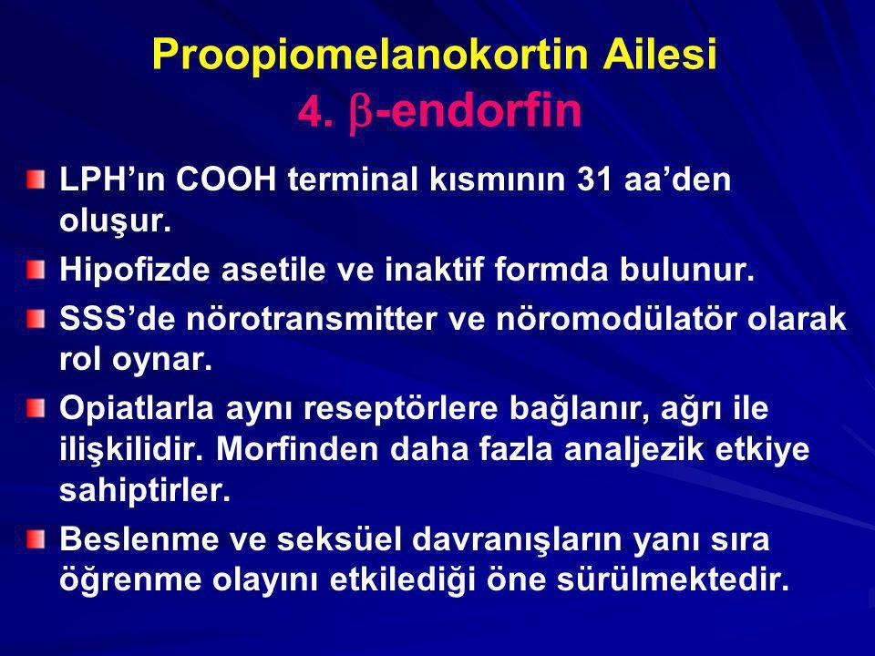 Proopiomelanokortin Ailesi 4.  -endorfin LPH'ın COOH terminal kısmının 31 aa'den oluşur. Hipofizde asetile ve inaktif formda bulunur. SSS'de nörotran