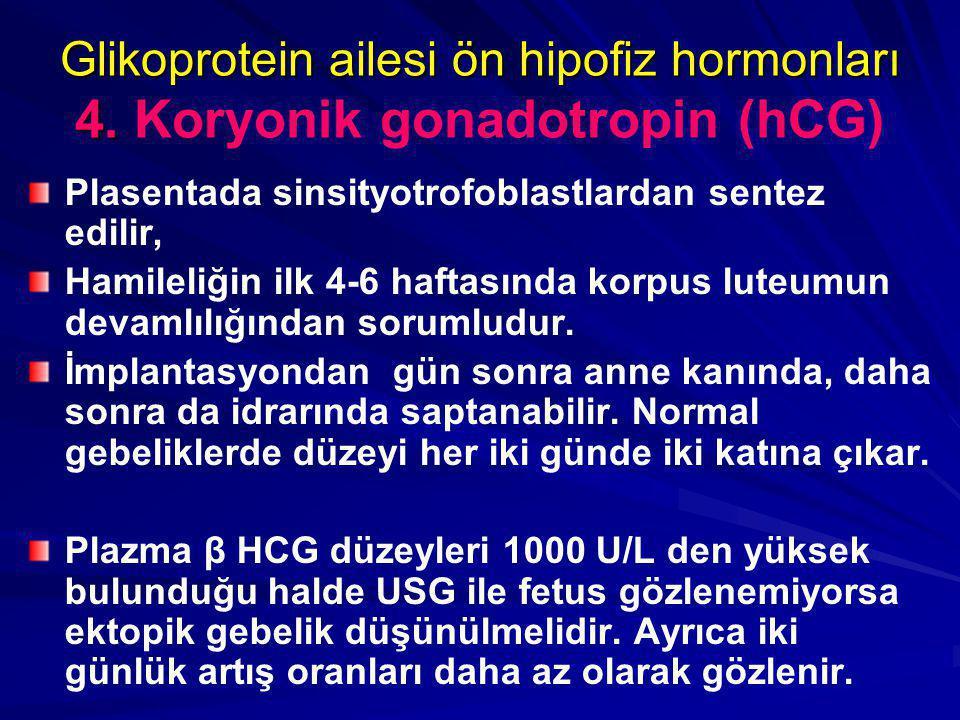 Glikoprotein ailesi ön hipofiz hormonları 4. Glikoprotein ailesi ön hipofiz hormonları 4. Koryonik gonadotropin (hCG) Plasentada sinsityotrofoblastlar