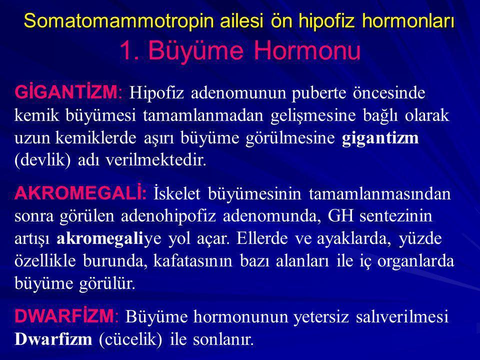 GİGANTİZM: Hipofiz adenomunun puberte öncesinde kemik büyümesi tamamlanmadan gelişmesine bağlı olarak uzun kemiklerde aşırı büyüme görülmesine gigantizm (devlik) adı verilmektedir.