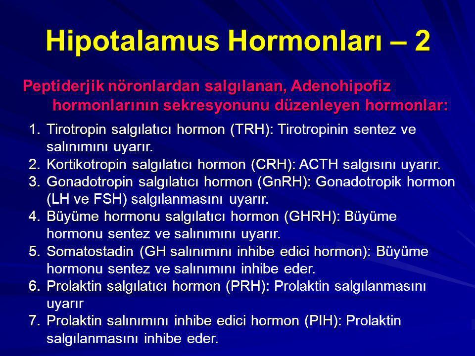 Hipotalamus Hormonları – 2 Peptiderjik nöronlardan salgılanan, Adenohipofiz hormonlarının sekresyonunu düzenleyen hormonlar: 1.Tirotropin salgılatıcı hormon (TRH): T 1.Tirotropin salgılatıcı hormon (TRH): Tirotropinin sentez ve salınımını uyarır.