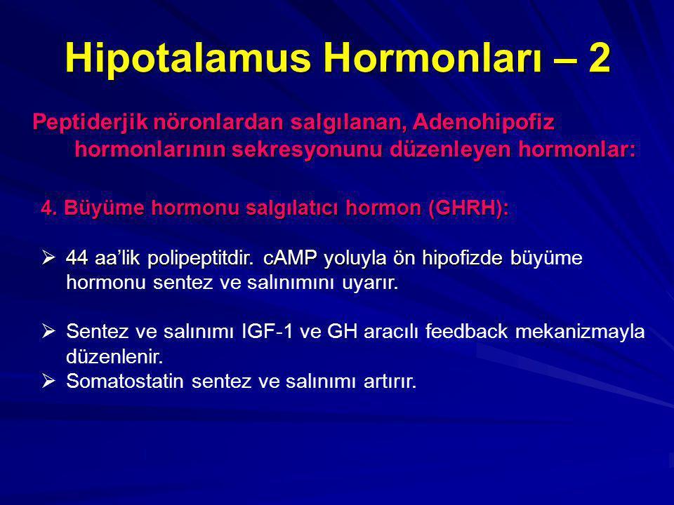 Hipotalamus Hormonları – 2 Peptiderjik nöronlardan salgılanan, Adenohipofiz hormonlarının sekresyonunu düzenleyen hormonlar: 4. Büyüme hormonu salgıla