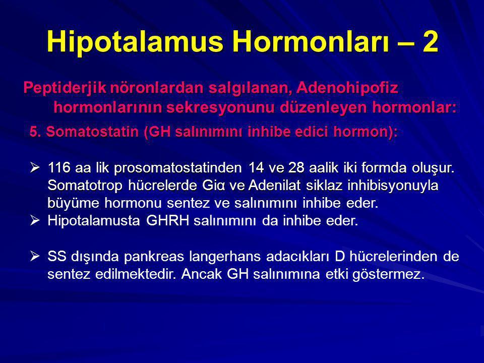 Hipotalamus Hormonları – 2 Peptiderjik nöronlardan salgılanan, Adenohipofiz hormonlarının sekresyonunu düzenleyen hormonlar: 5. Somatostatin (GH salın