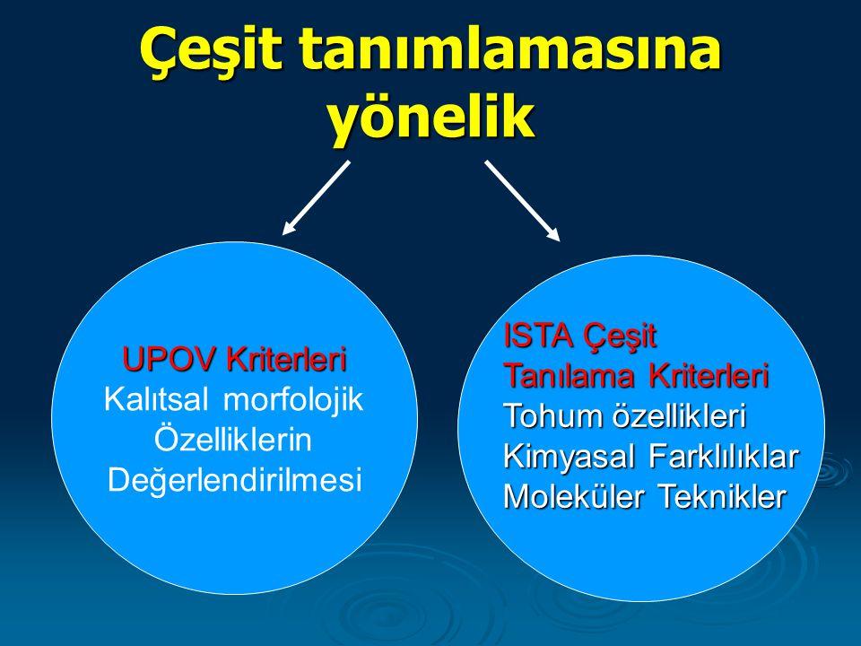 Çeşit tanımlamasına yönelik UPOV Kriterleri Kalıtsal morfolojik Özelliklerin Değerlendirilmesi ISTA Çeşit ISTA Çeşit Tanılama Kriterleri Tanılama Krit