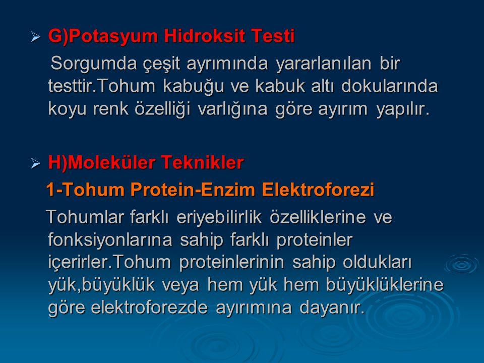  G)Potasyum Hidroksit Testi Sorgumda çeşit ayrımında yararlanılan bir testtir.Tohum kabuğu ve kabuk altı dokularında koyu renk özelliği varlığına gör