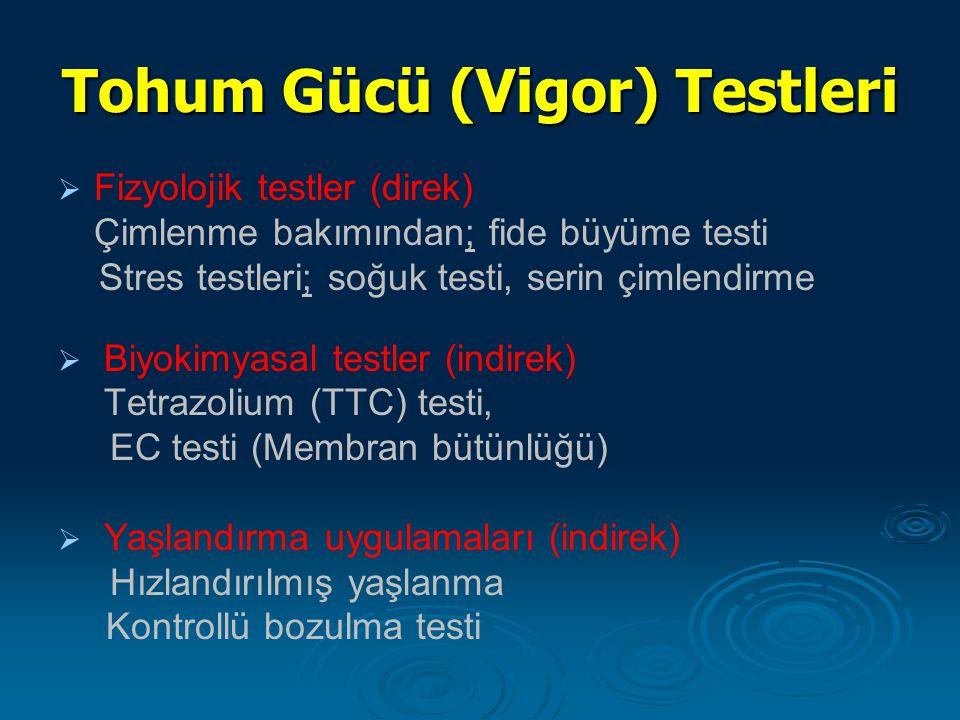 Tohum Gücü (Vigor) Testleri   Fizyolojik testler (direk) Çimlenme bakımından; fide büyüme testi Stres testleri; soğuk testi, serin çimlendirme   B
