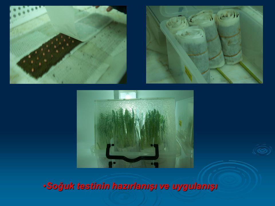 •Soğuk testinin hazırlanışı ve uygulanışı