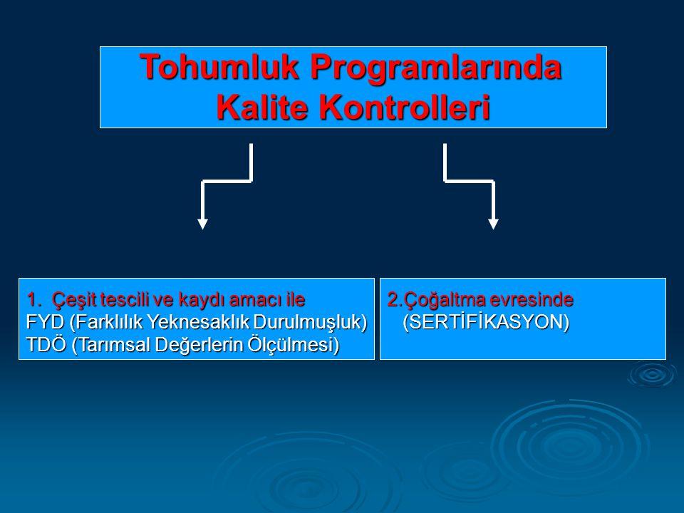 Tohumluk Programlarında Kalite Kontrolleri Kalite Kontrolleri 1.Çeşit tescili ve kaydı amacı ile FYD (Farklılık Yeknesaklık Durulmuşluk) TDÖ (Tarımsal