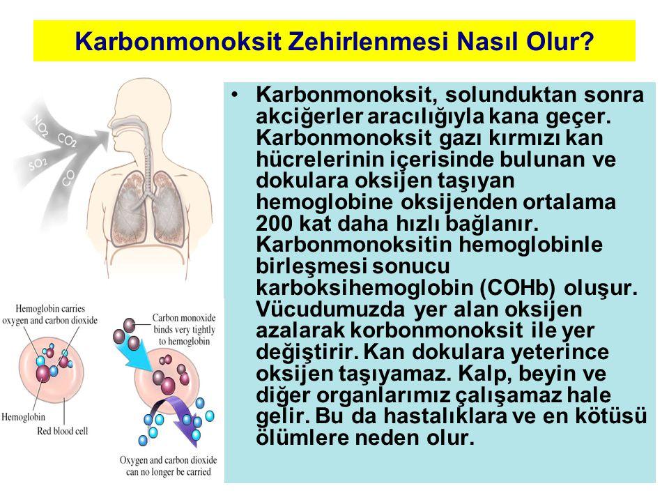 Karbonmonoksit Zehirlenmesi Nasıl Olur? •Karbonmonoksit, solunduktan sonra akciğerler aracılığıyla kana geçer. Karbonmonoksit gazı kırmızı kan hücrele