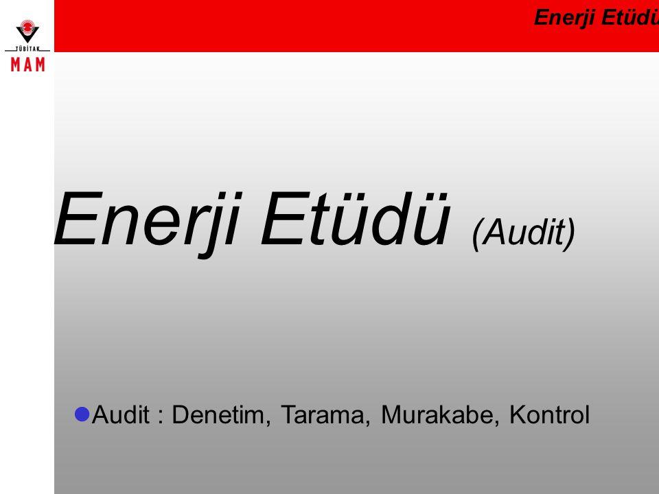 Enerji Etüdü (Audit) Enerji Etüdü  Audit : Denetim, Tarama, Murakabe, Kontrol