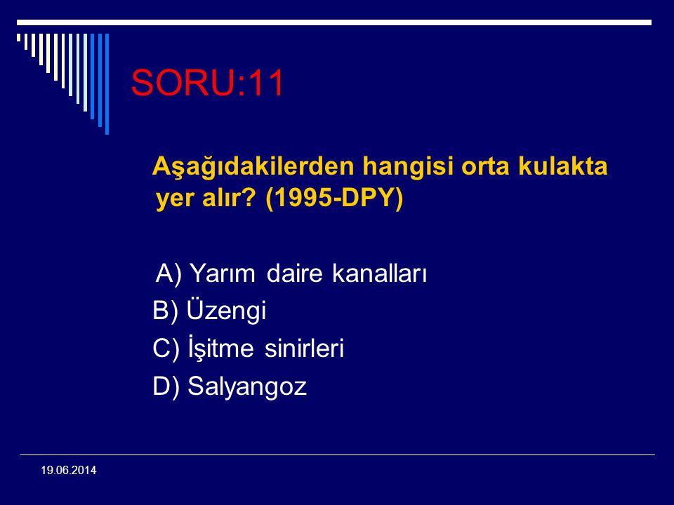 19.06.2014 SORU:11 Aşağıdakilerden hangisi orta kulakta yer alır? (1995-DPY) A) Yarım daire kanalları B) Üzengi C) İşitme sinirleri D) Salyangoz