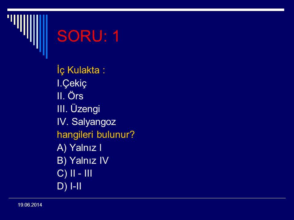 19.06.2014 SORU: 1 İç Kulakta : I.Çekiç II. Örs III. Üzengi IV. Salyangoz hangileri bulunur? A) Yalnız l B) Yalnız IV C) II - III D) I-II