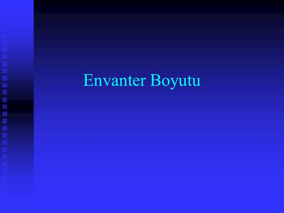 Envanter Boyutu