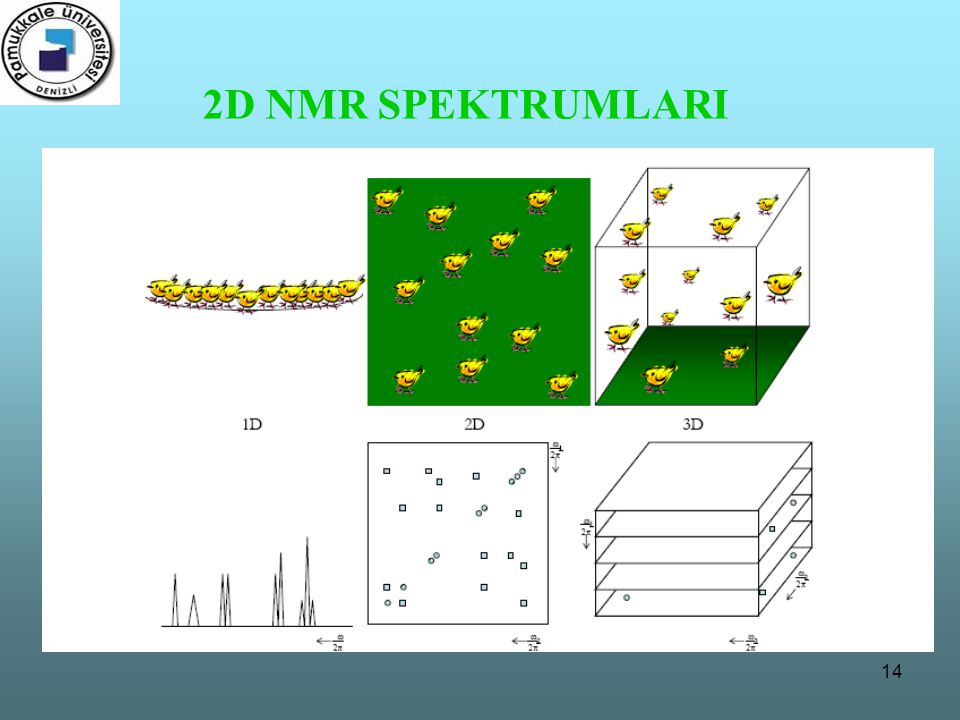 14 2D NMR SPEKTRUMLARI