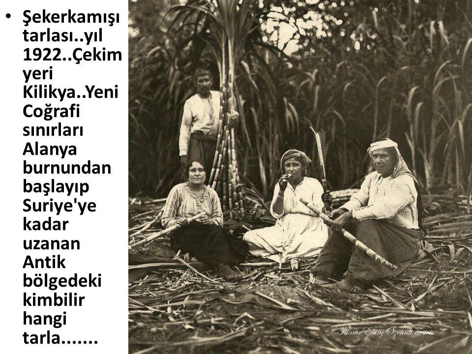 • Şekerkamışı tarlası..yıl 1922..Çekim yeri Kilikya..Yeni Coğrafi sınırları Alanya burnundan başlayıp Suriye'ye kadar uzanan Antik bölgedeki kimbilir