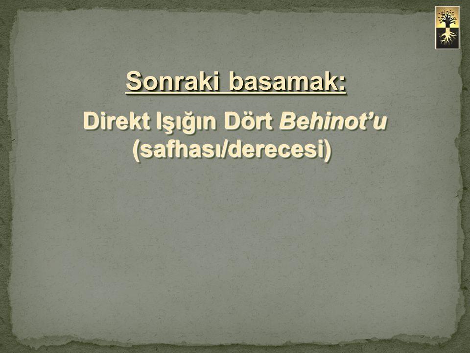 Direkt Işığın Dört Behinot'u (safhası/derecesi) Sonraki basamak: