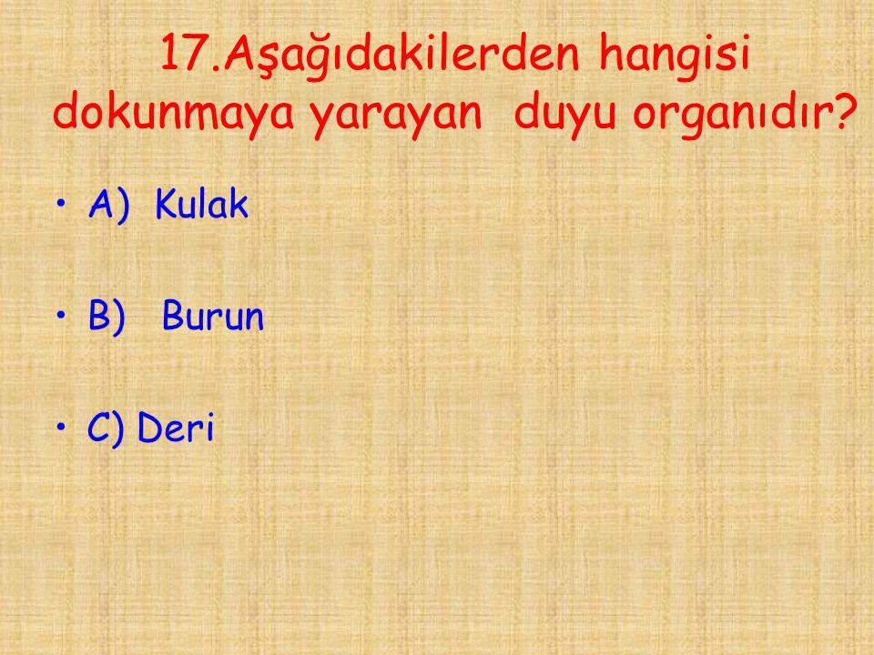 17.Aşağıdakilerden hangisi dokunmaya yarayan duyu organıdır? •A) Kulak •B) Burun •C) Deri