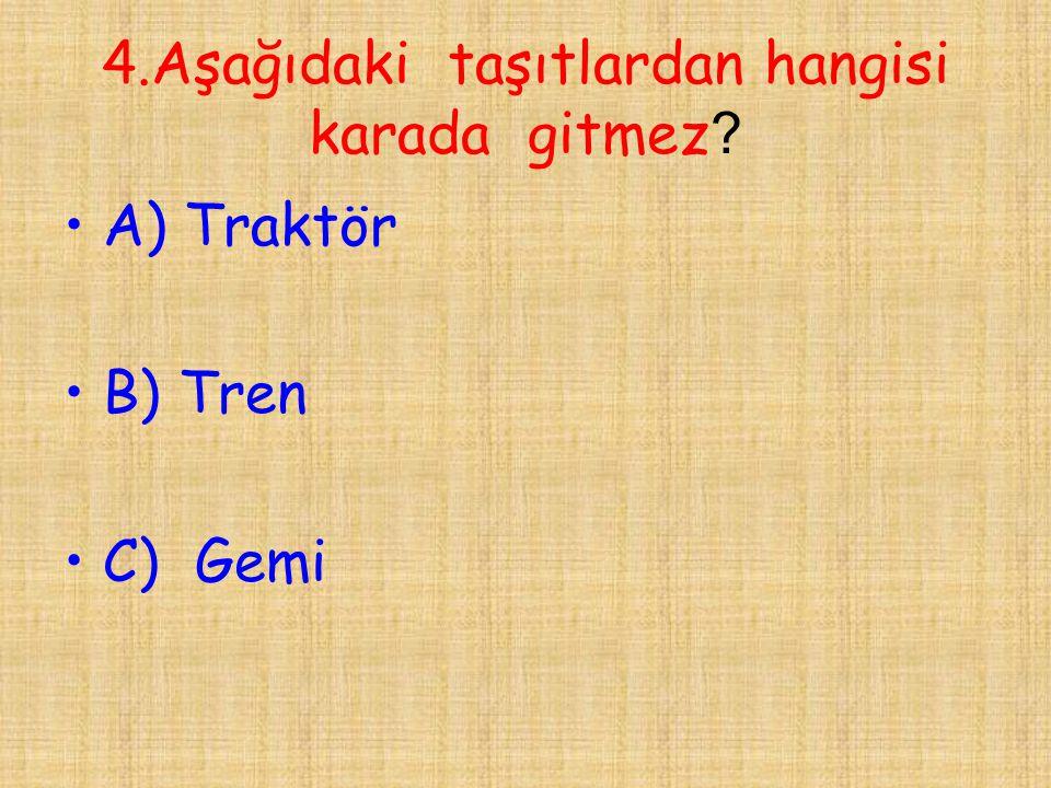 25.Mustafa Kemal Atatürk'ün mezarı nerede bulunmaktadır .