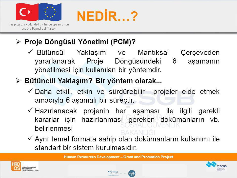 Human Resources Development – Grant and Promotion Project NEDİR….