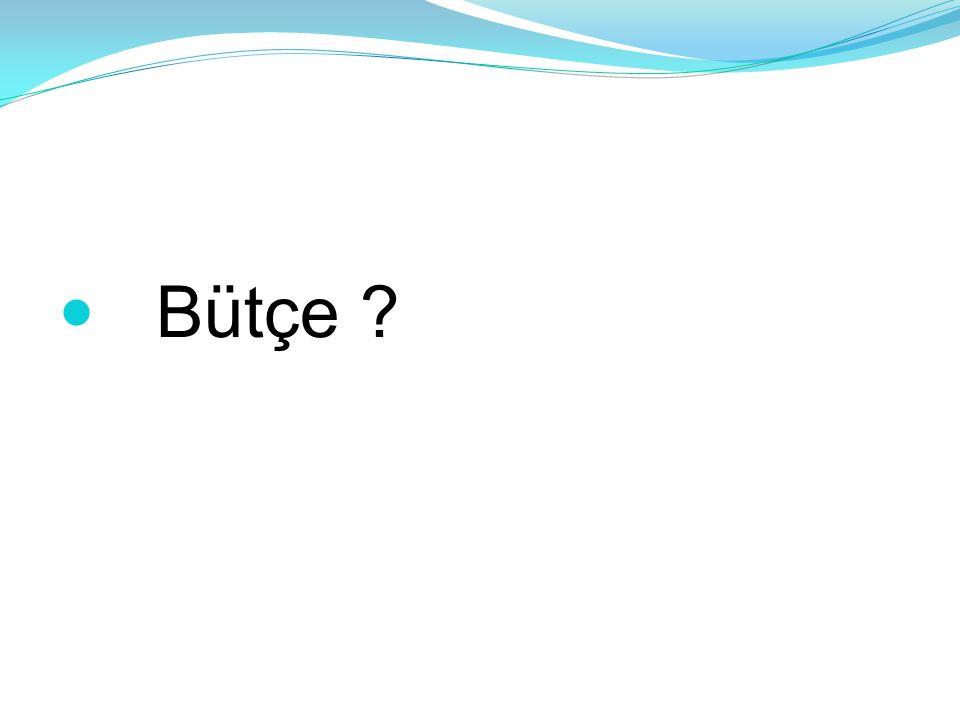  Bütçe ?