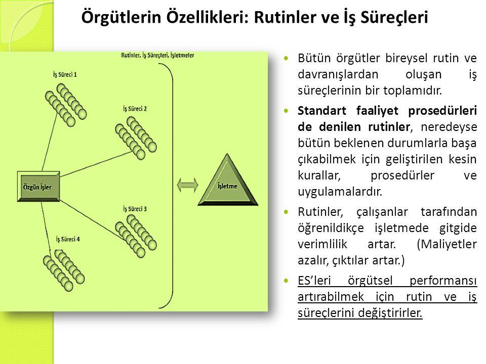 Örgütlerin Özellikleri: Rutinler ve İş Süreçleri  Bütün örgütler bireysel rutin ve davranışlardan oluşan iş süreçlerinin bir toplamıdır.  Standart f