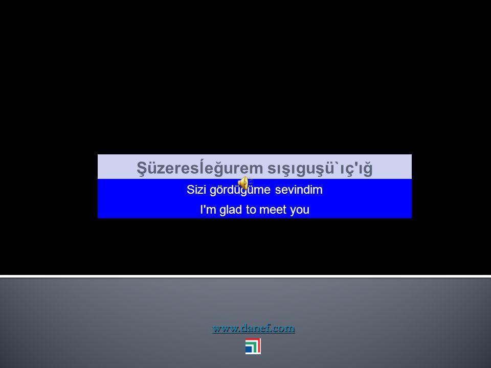 www.danef.com Siç ıfe kesımpşınışünç e seşıne Korkarım borcumu ödiyemiyeceğim I m afraid can t pay my dept