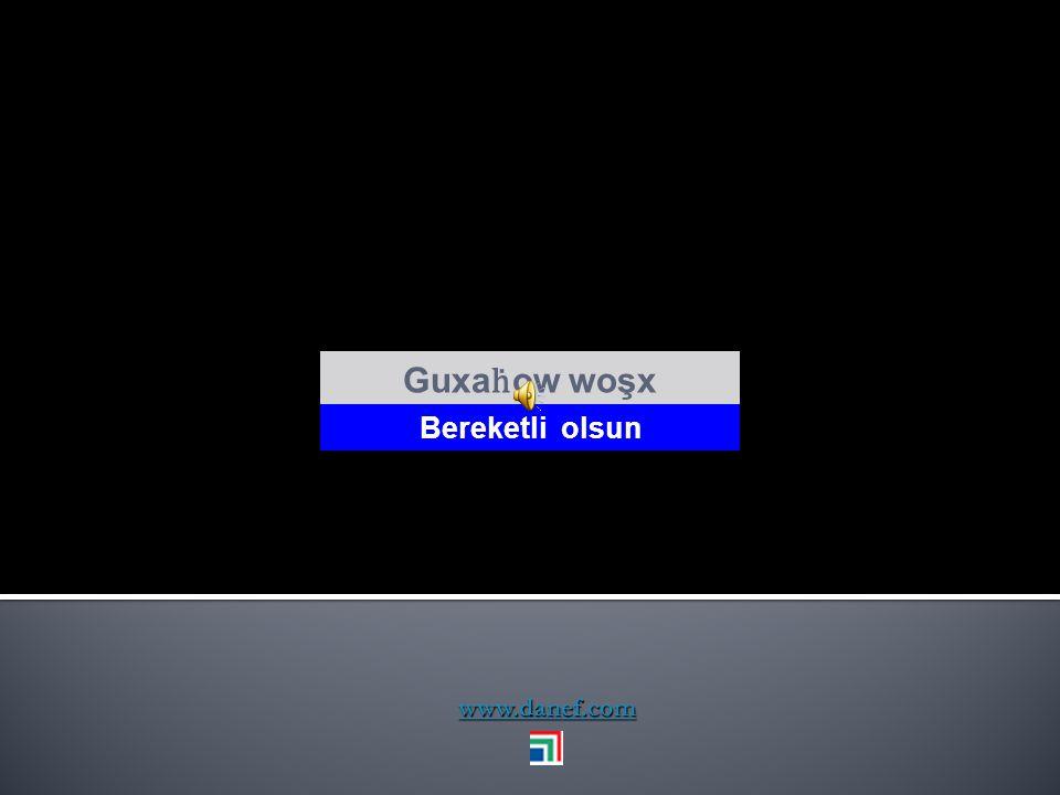 www.danef.com Çeş rehat koqu` iyi geceler