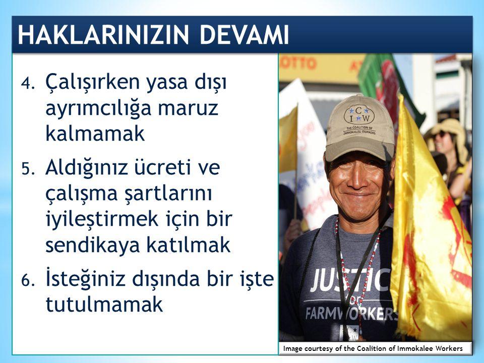 Image courtesy of the Coalition of Immokalee Workers HAKLARINIZIN DEVAMI 4.