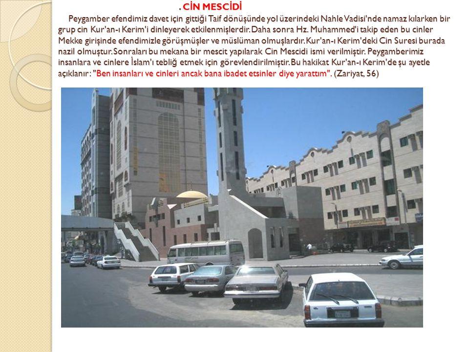 . C İ N MESC İ D İ Peygamber efendimiz davet için gitti ğ i Taif dönüşünde yol üzerindeki Nahle Vadisi'nde namaz kılarken bir grup cin Kur'an-ı Kerim'
