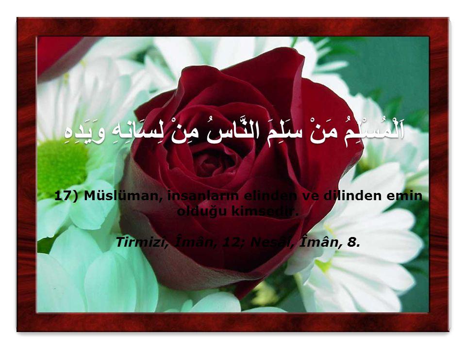 اَلْمُسْلِمُ مَنْ سَلِمَ النَّاسُ مِنْ لِسَانِهِ وَيَدِهِ 17) Müslüman, insanların elinden ve dilinden emin olduğu kimsedir. Tirmizî, Îmân, 12; Nesâî,