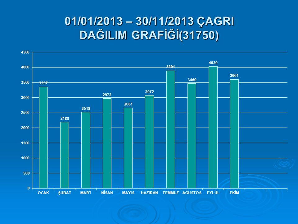 01/01/2013 – 30/11/2013 ÇAGRI DAĞILIM GRAFİĞİ(31750)