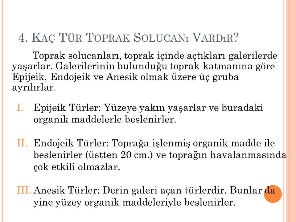 4.K AÇ T ÜR T OPRAK S OLUCANı V ARDıR .