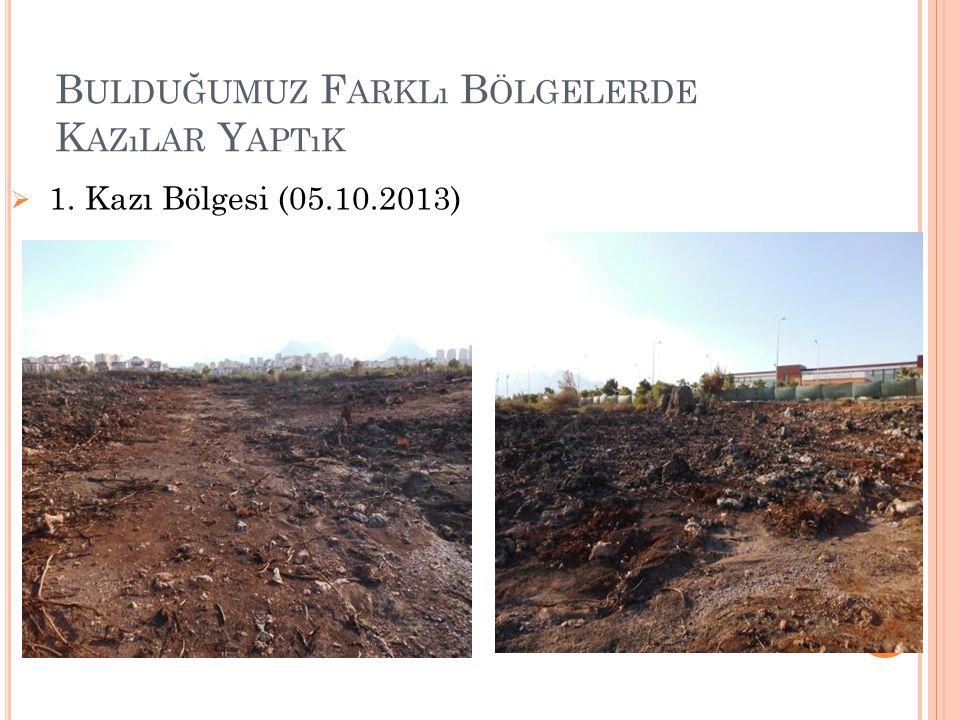 B ULDUĞUMUZ F ARKLı B ÖLGELERDE K AZıLAR Y APTıK  1. Kazı Bölgesi (05.10.2013)