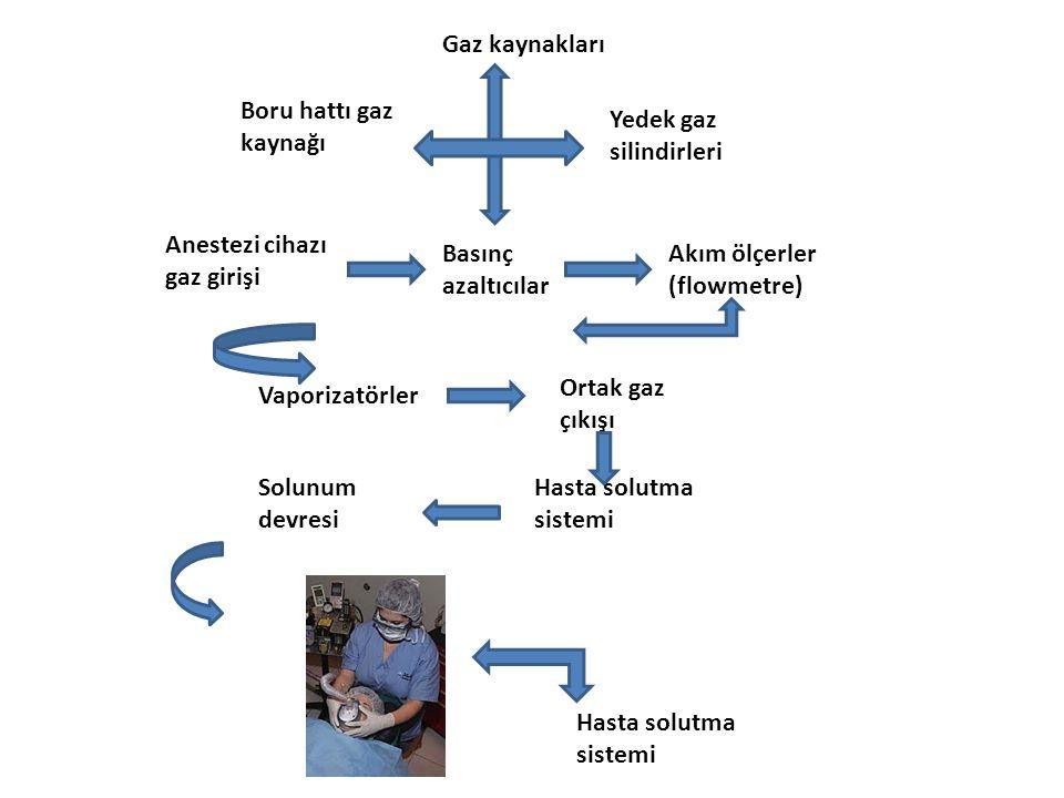 Gaz kaynakları Boru hattı gaz kaynağı Yedek gaz silindirleri Anestezi cihazı gaz girişi Basınç azaltıcılar Akım ölçerler (flowmetre) Vaporizatörler Or