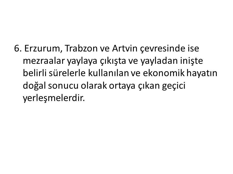 6. Erzurum, Trabzon ve Artvin çevresinde ise mezraalar yaylaya çıkışta ve yayladan inişte belirli sürelerle kullanılan ve ekonomik hayatın doğal sonuc