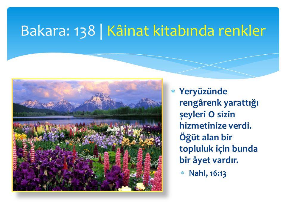  Yeryüzünde rengârenk yarattığı şeyleri O sizin hizmetinize verdi. Öğüt alan bir topluluk için bunda bir âyet vardır.  Nahl, 16:13 Bakara: 138 | Kâi