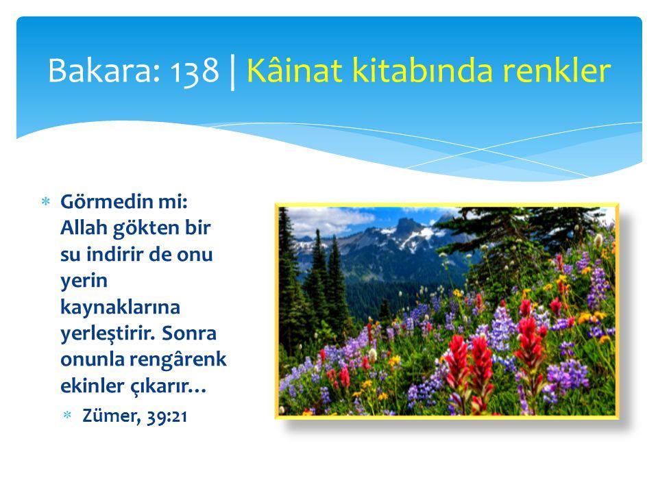  Görmedin mi: Allah gökten bir su indirir de onu yerin kaynaklarına yerleştirir. Sonra onunla rengârenk ekinler çıkarır…  Zümer, 39:21 Bakara: 138 |